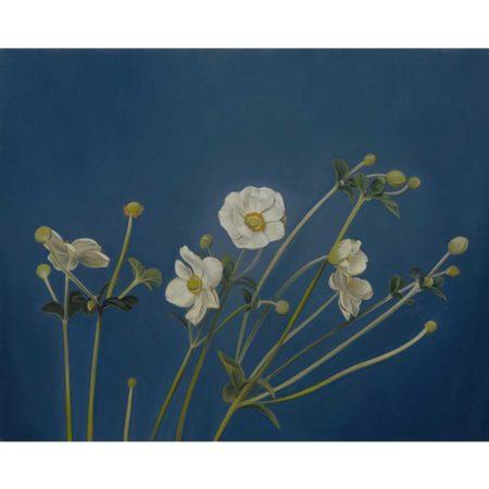 untitled-anemone-jeffrey-thompson-moberg